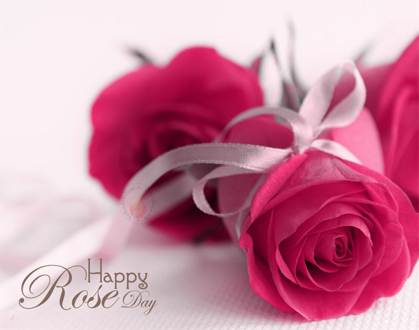 rose day 2018 wallpapers