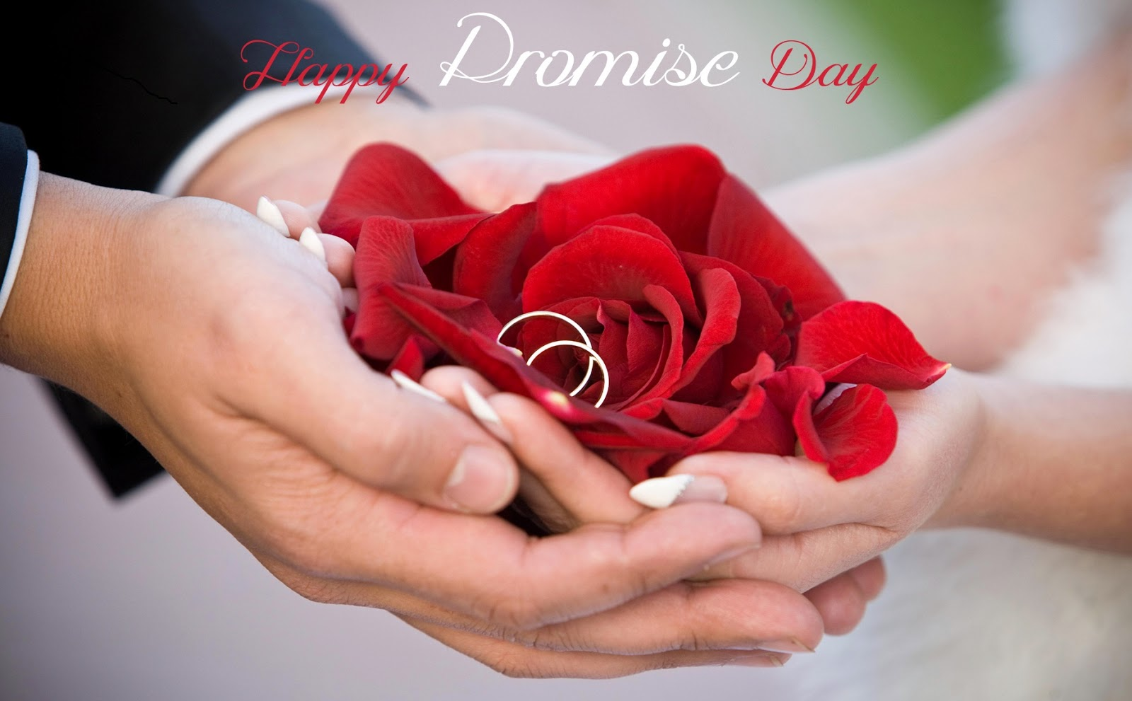 Image result for promise day
