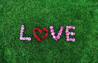 Love SMS in English Love SMS in English For Lover Love SMS in English For BF Sweet Love SMS in English For GF Love SMS in English For Husband 2 line Love SMS in English For Wife Love SMS in English For Boyfriend Love SMS in English For Girlfriend One Line Love SMS in English Heart Touching Love SMS in English 1000+ Love SMS in English For Someone Special We Have The Best Collection of Love SMS in English. You can Share With Your Love, GF, BF, Husband, Wife, Girlfriend, Boyfriend. Check our 2 line Love SMS.