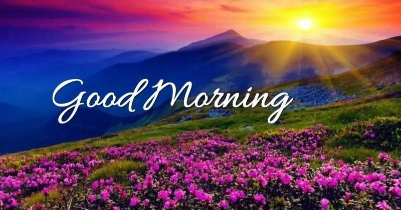 Good Morning SMS in English Good Morning SMS in English For Girlfriend Good Morning SMS in English For Boyfriend 2 Line Good Morning SMS in English Good Morning SMS in English For Family Good Morning SMS in English For Love Funny Good Morning SMS in English Good Morning SMS in English For Whatsapp Good Morning SMS in English For Facebook Motivational Good Morning SMS in English Good Morning SMS in English For Friend 1000+ Good Morning SMS in English - Beautiful Collection Read 1000+ Good Morning SMS in English. Updatepedia Provides the Unique collection of Good Morning SMS on Friends, Funny, Family, Love, 2 Line, Motivational